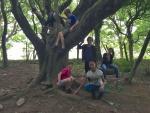 Forest01.jpg